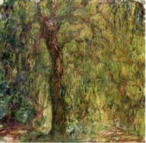 Salkimsogut ,1918-1919