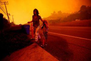 California yangın ABD