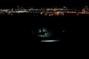 Meksika at devriye polis