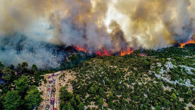 orman yangını neden çıkıyor?